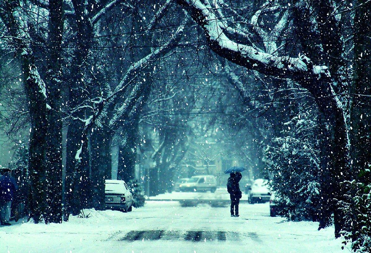 BrainStorm New Jersey Tutors winter blog image