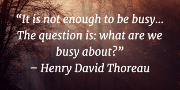 Thoreau quote - BrainStorm Tutoring Franklin Lakes NJ