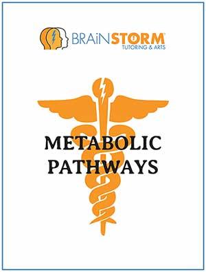 BrainStorm metabolic pathways e-book cover